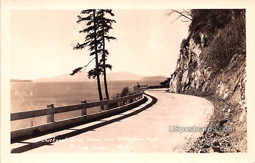 Chuckanut Drive - Bellingham, Washington WA Postcard