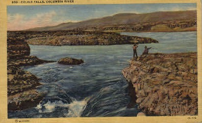 Columbia River - Celilo Falls, Washington WA Postcard