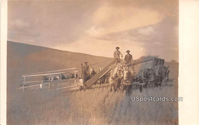 Harvesting - Colfax, Washington WA Postcard