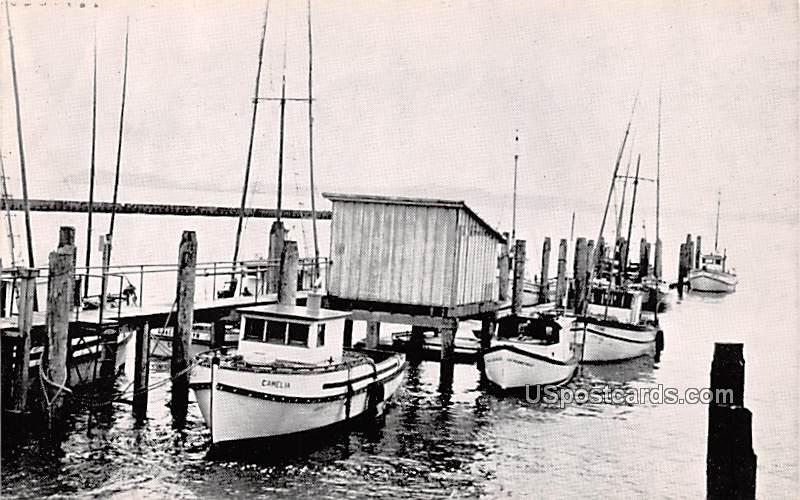 Home from the Sea - CHinook, Washington WA Postcard