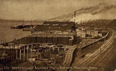Weyerhouse Lumber Mills - Everett, Washington WA Postcard