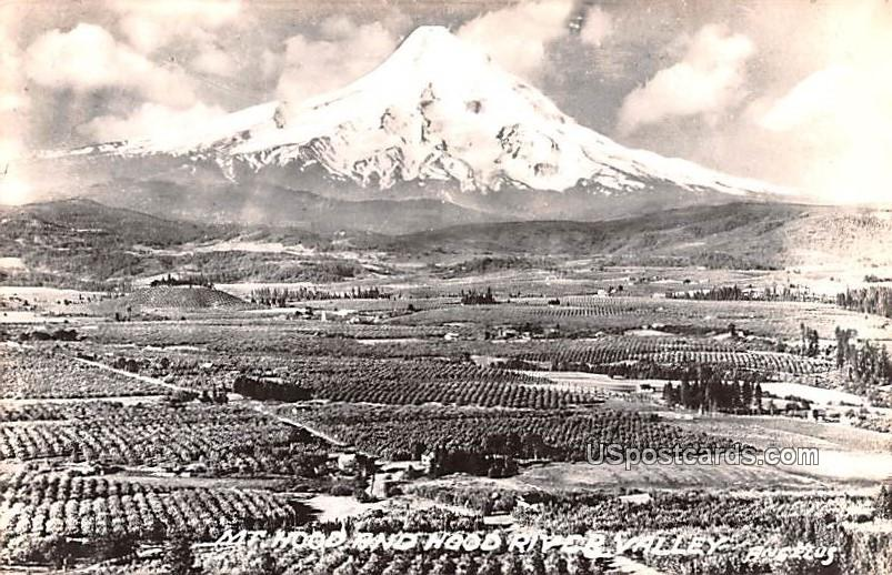 Mount Hood - Hood River Valley, Washington WA Postcard