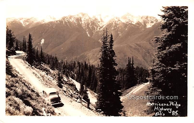 Hurricane Ridge Highway - Washington WA Postcard