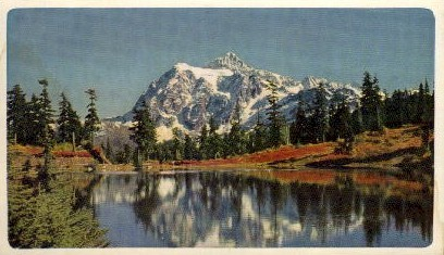 Mt. Baker National Forest - Washington WA Postcard