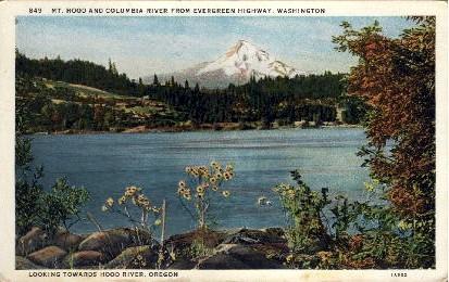 Columbia River - Mt. Hood, Washington WA Postcard
