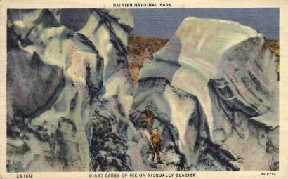 Nisqually Glacier - Mt. Rainer National Park, Washington WA Postcard