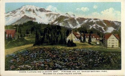 Paradise Inn - Mt. Rainer National Park, Washington WA Postcard