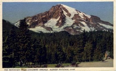 Longmire Springs - Mt. Rainer National Park, Washington WA Postcard