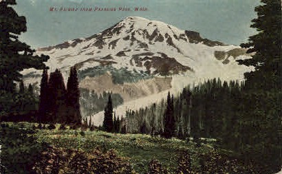 Paradise Park - Mt. Rainer National Park, Washington WA Postcard