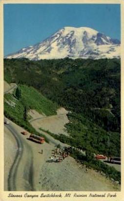 Stevens Canyon Switchback - Mt. Rainer National Park, Washington WA Postcard