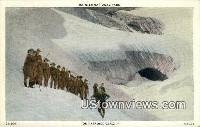Paradise Glacier - Rainier National Park, Washington WA Postcard