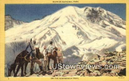 Sourdough Trail - Rainier National Park, Washington WA Postcard