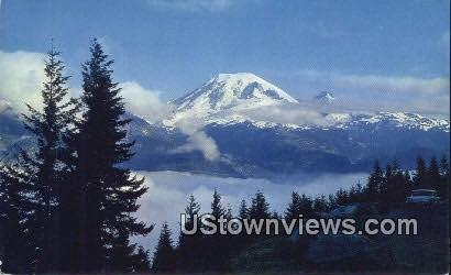 Stevens Canyon Road Lookout - Mt Rainier, Washington WA Postcard