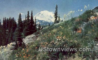 Dewey Lake Trail - Mt Rainier, Washington WA Postcard