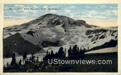 Paradise Park - Mt Rainier, Washington WA Postcard