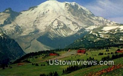Sunrise Park - Mt. Rainier National Park, Washington WA Postcard