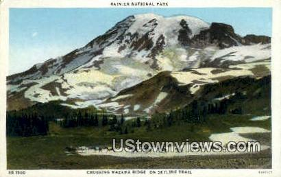 Mazama Ridge - Rainier National Park, Washington WA Postcard