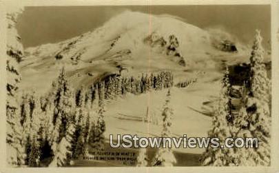 Real Photo - Rainier National Park, Washington WA Postcard