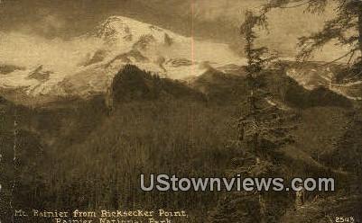 Ricksecker Point - Mt Rainier, Washington WA Postcard