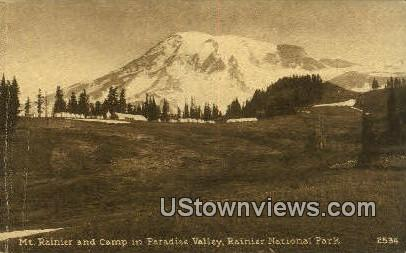 Paradise Valley - Mt Rainier, Washington WA Postcard