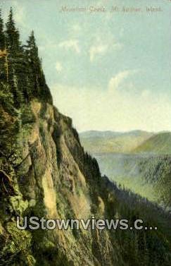 Mountain Goats - Mt Rainier, Washington WA Postcard