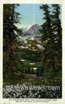 Spray Park - Rainier National Park, Washington WA Postcard