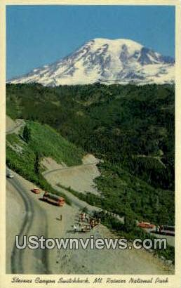 Stevens Canyon Switchback - Mt. Rainier National Park, Washington WA Postcard