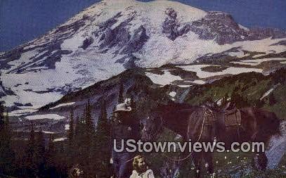 Mazama Ridge - Mt Rainier, Washington WA Postcard