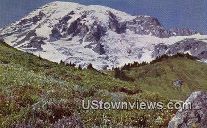 Alta Vista - Mt Rainier, Washington WA Postcard