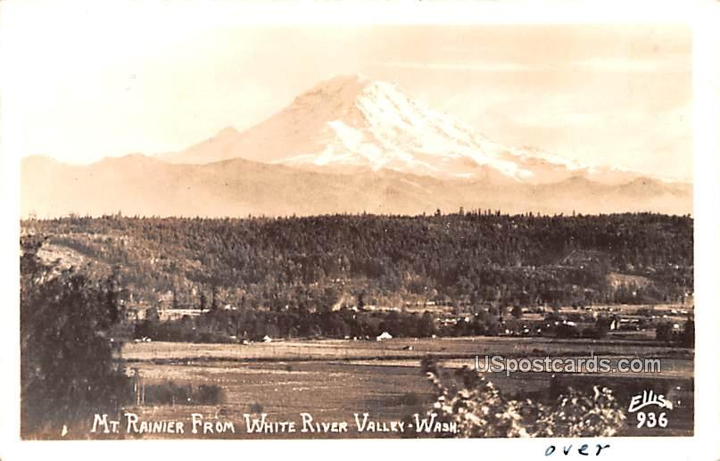 From White River Valley - Mount Rainier, Washington WA Postcard