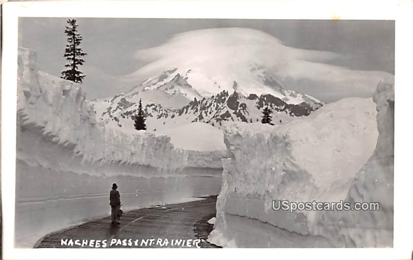 Nachees Pass - Mount Rainier, Washington WA Postcard