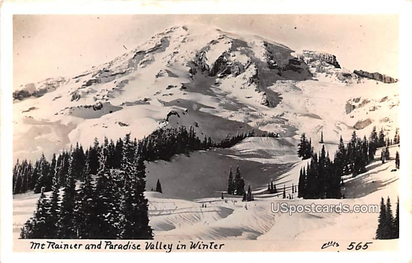 Paradise Valley in Winter - Mount Rainier, Washington WA Postcard