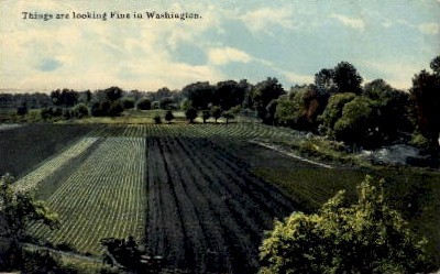 Farm - Misc, Washington WA Postcard
