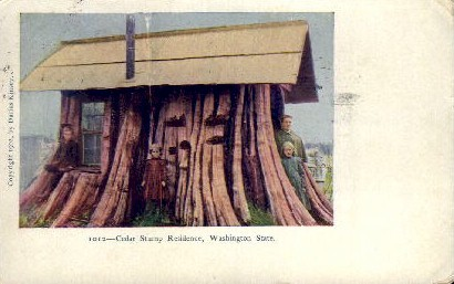Cedar Stump Residence - Misc, Washington WA Postcard