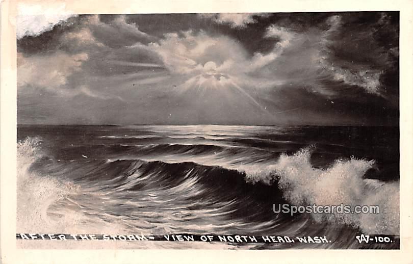 After the Storm - North Head, Washington WA Postcard