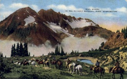 Trail Riders - Olympia, Washington WA Postcard