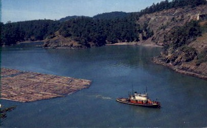 Log Raft - Puget Sound, Washington WA Postcard