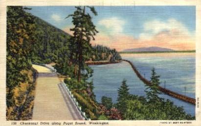 Chuckanut Drive - Puget Sound, Washington WA Postcard