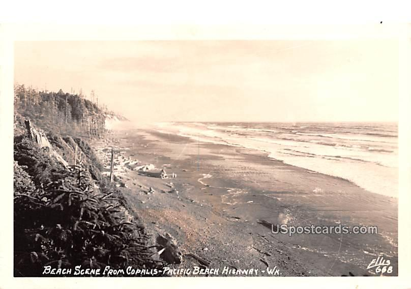 Beach Scene - Pacific Beach Highway, Washington WA Postcard