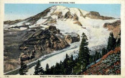 Rainier National Park, Washington Postcard