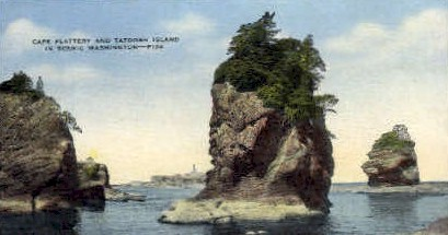 Cape Flattery and Tatoosh Island - Misc, Washington WA Postcard
