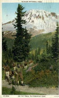 On the Trail to Pinnacle Peak - Rainier National Park, Washington WA Postcard