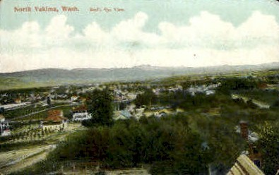 Birds Eye View - North Yakima, Washington WA Postcard