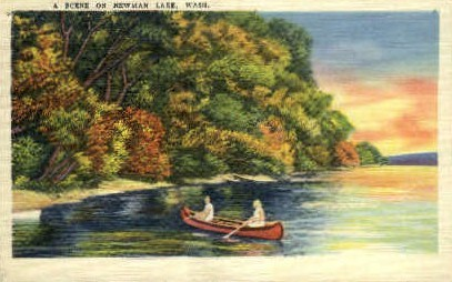 Scene on Newman Lake - Misc, Washington WA Postcard