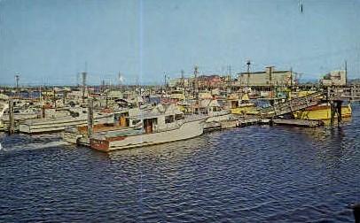 Fishing Boats  - Westport, Washington WA Postcard