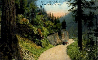 Auto Road thru the Mountains - Misc, Washington WA Postcard