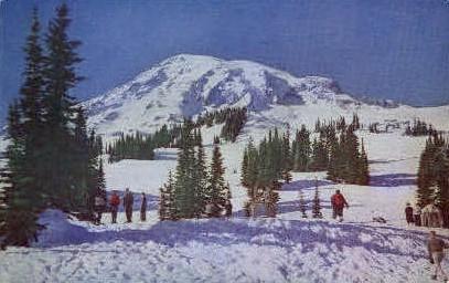 Skiing on Mt. Rainier - Rainier National Park, Washington WA Postcard