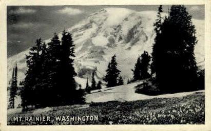 Mt. Rainier - Mt Rainier, Washington WA Postcard