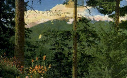 Bailey Range - Olympic National Park, Washington WA Postcard
