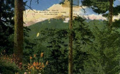 Bailey Range - Olympic National Park, Washington WA Postcard